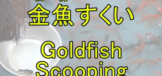 goldfish scooping