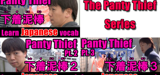panty thief series