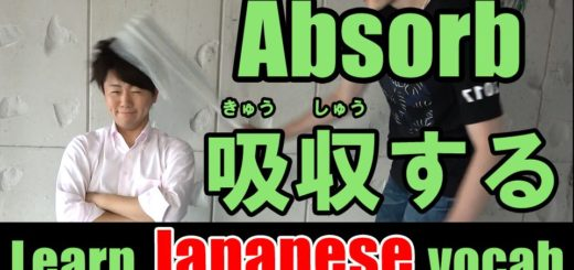 absorb Japanese