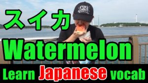 watermelon Japanese